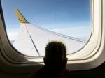 Der Kaktus im Flugzeug nach Griechenland